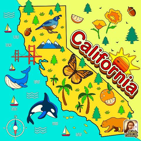 user Marie Adams apkdeer profile image