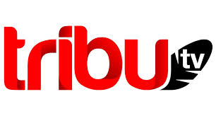 Logo Tribu TV