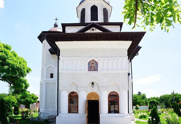 PalateIlfov13.JPG