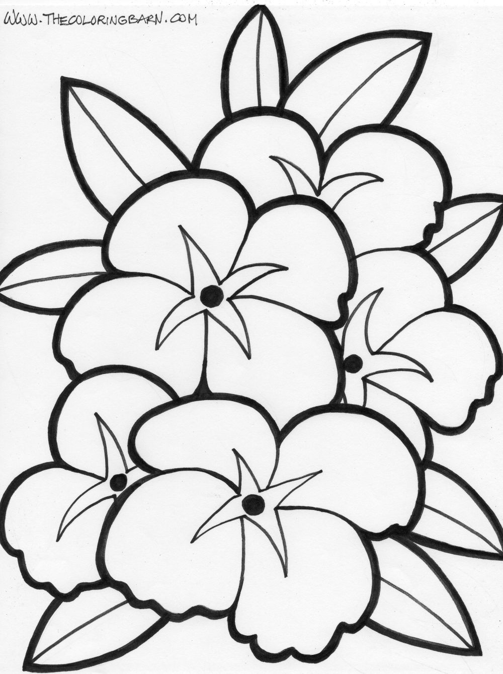 Appealing Coloring Pages Draw Easy Flowers Flower Template To Print Printable Simple Sheets Pictures Full