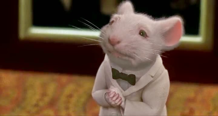 Free Download Single Resumable Direct Download Links For Hollywood Movie Stuart Little (1999) In Dual Audio