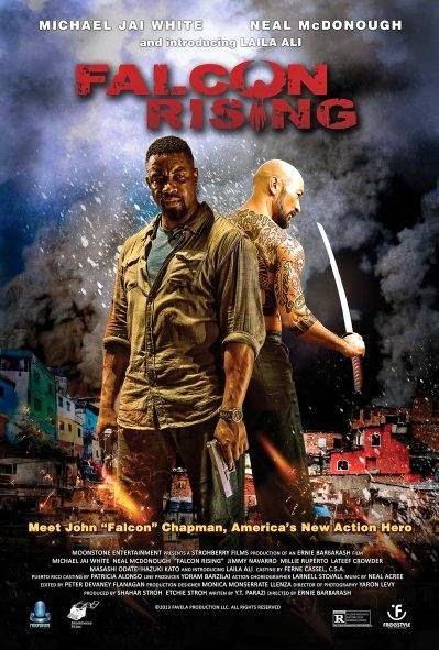 Poster Of English Movie Falcon Rising (2014) Free Download Full New Hollywood Movie Watch Online At Alldownloads4u.Com
