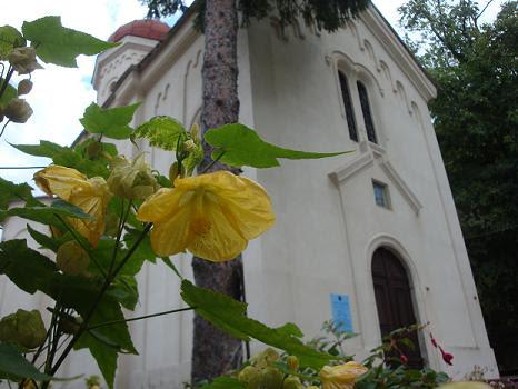 Монастырь Суводол