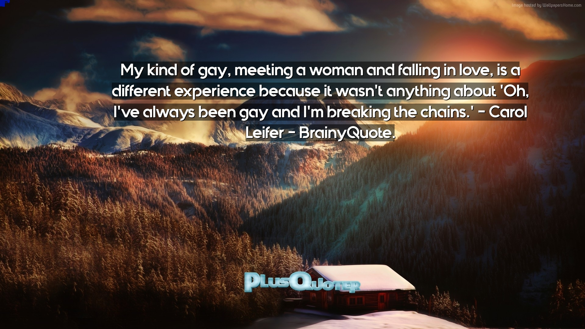 Gay Love Quotes My Kind Of Gay Meeting A Woman And Falling In Love Is A