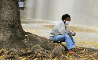 Brésil : la grippe porcine a déjà fait 764 morts