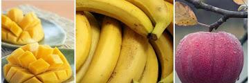 Good High Fiber fruit for Babies