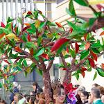 CarnavaldeNavalmoral2015_094.jpg