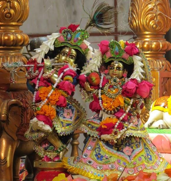 ISKCON Vallabh vidhyanagar Deity Darshan 17 jan 2017 (7)