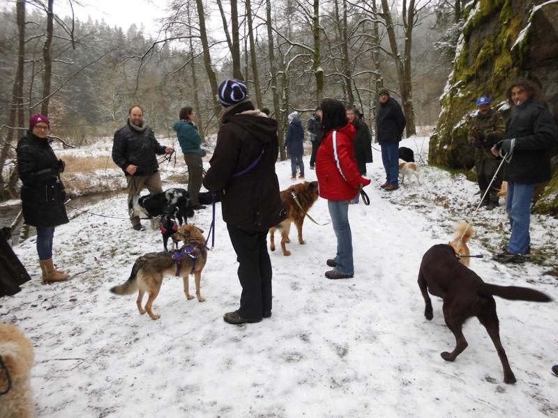 1. Januar 2016: Neujahrswanderung ins Waldnaabtal - DSCI0144.JPG