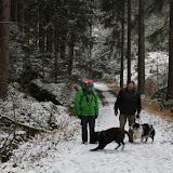 01. Januar 2016: Neujahrswanderung ins Waldnaabtal - IMG_1555.JPG