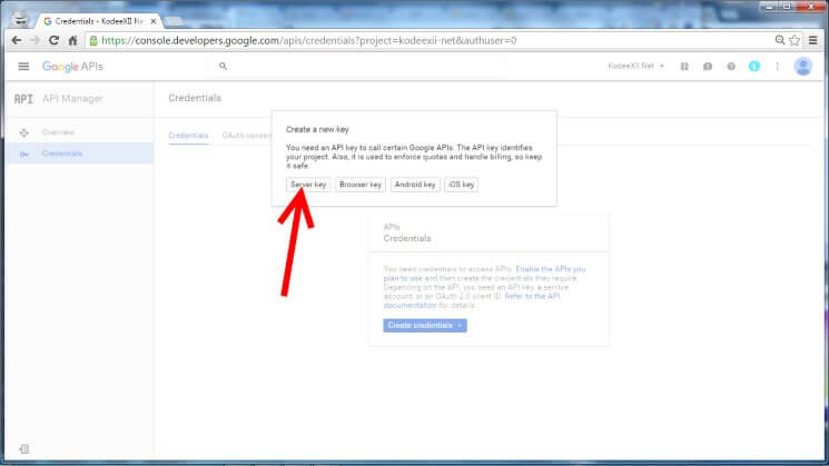 Web Push Notification Google Dev Console GCM Credential New Key
