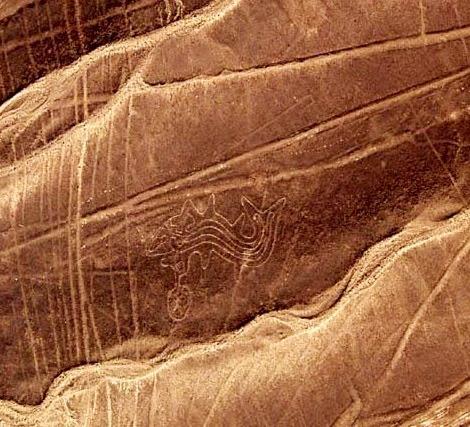 Las líneas de Nazca - La orca - HistoriadelasCivilizaciones.com