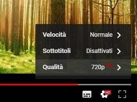 qualità sottotitoli video