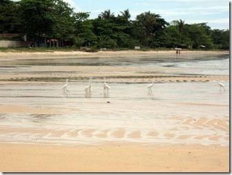 praia-de-cumuruxatiba-prado-bahia-1