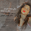 منى الاشهري's profile photo