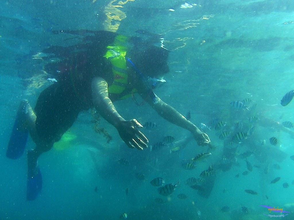 pulau harapan, 16-17 agustus 2015 skc 046