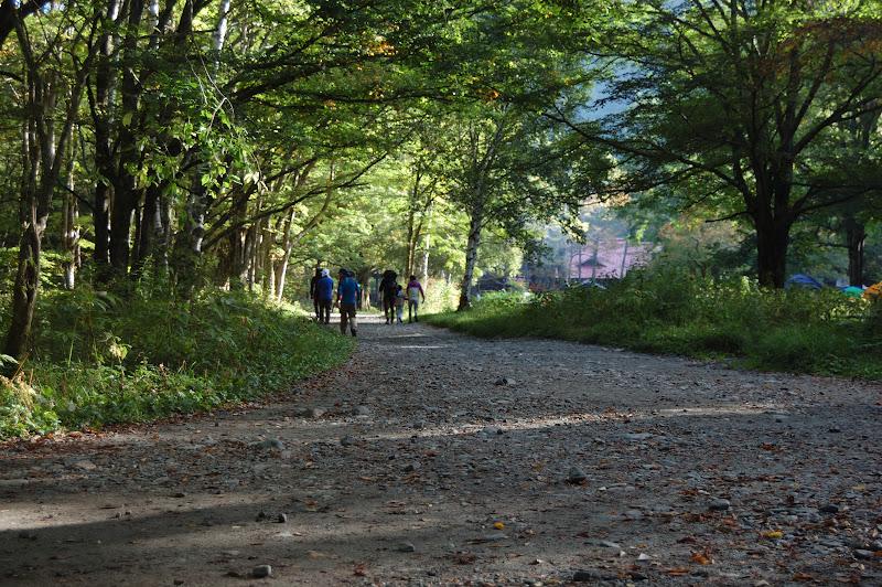 徳澤トイレの前の道、徳澤園への道