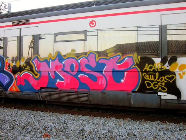 most-dgs (1)