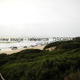 _DSC9533.thumb.jpg