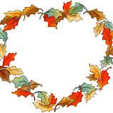 otoño2.jpg