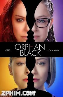 Hoán Vị 2 - Orphan Black Season 2 (2014) Poster