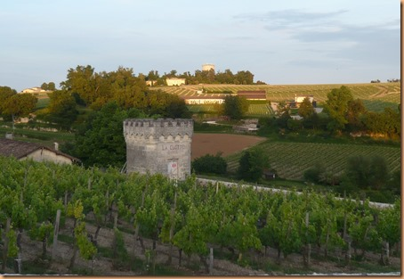 St Emilion views3