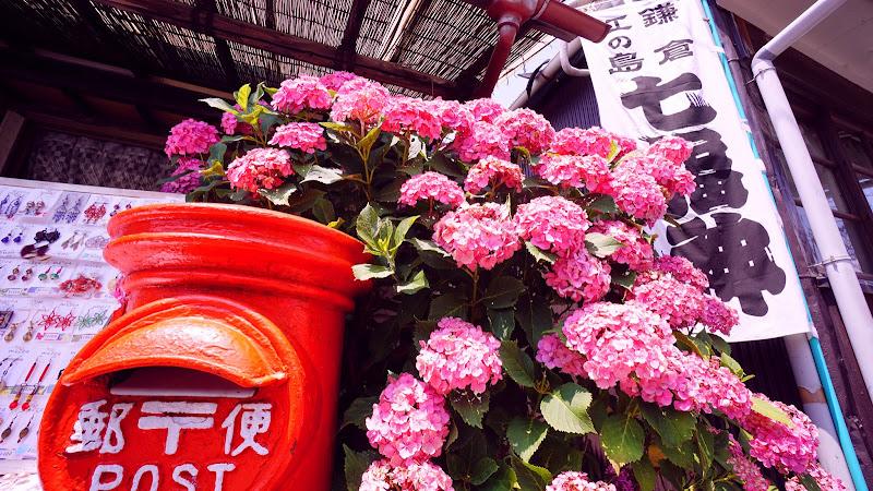 鎌倉 郵便ポスト あじさい 写真
