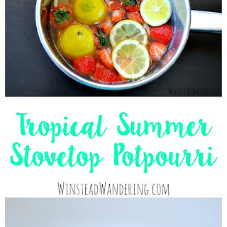 Homemade Tropical Summer Stovetop Potpourri
