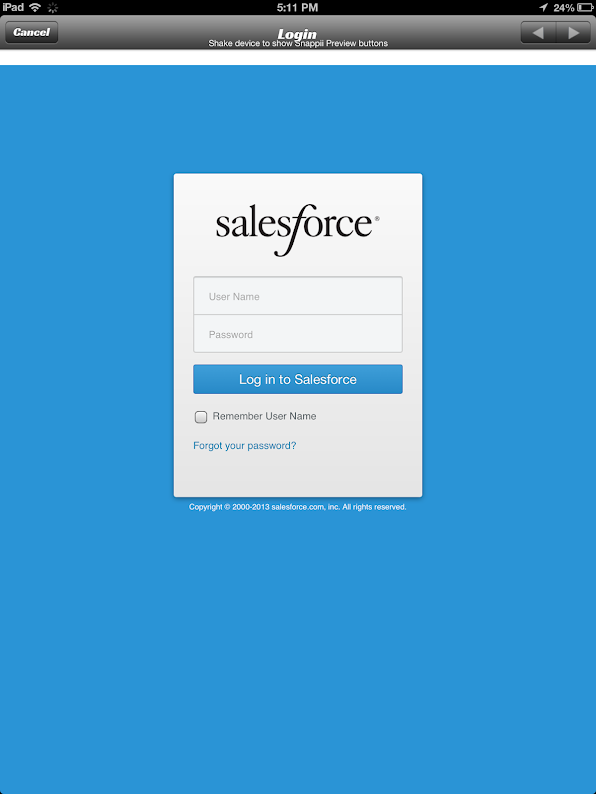 SalesForce App 4