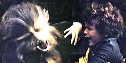 Boy Who Cried Werewolf