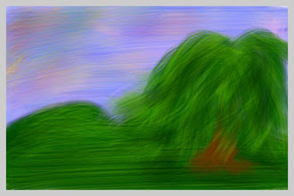 "Photo: ""Sleeping Willow"""