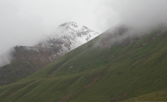 Chon Ashuu Pass : versants (3800 m) biotopes d'Erebia kalmuka et de Parnassius tianschanicus astrictio. 9 juillet 2006. Photo : J.-M. Gayman