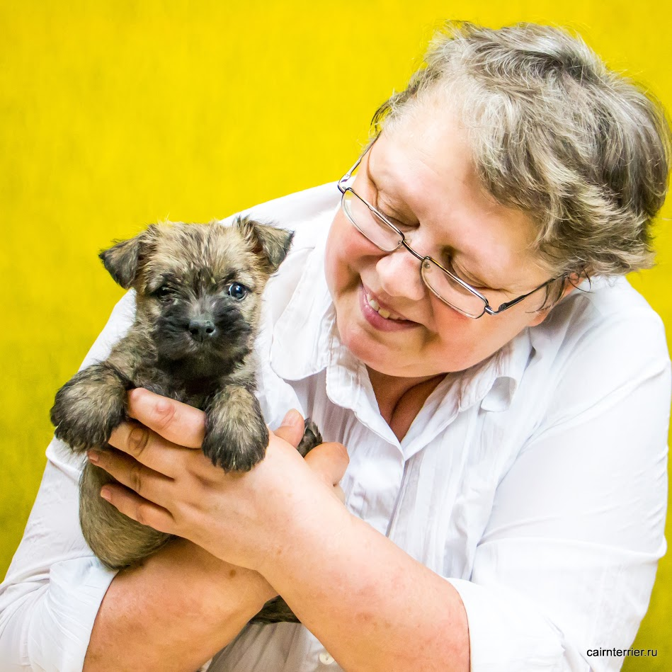 Владелец питомника Еливс Елена Сорокина со щенком керн терьера
