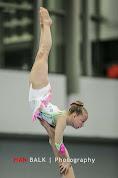 Han Balk Fantastic Gymnastics 2015-2250.jpg