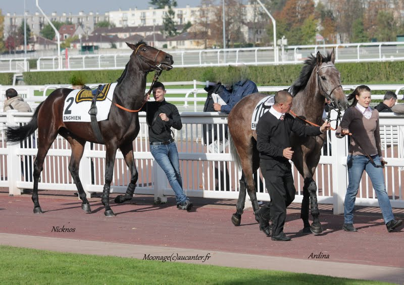Photos Enghien 24-10-2015 IMG_5643