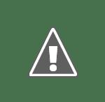 Ponta Antonescu Alegerile, durere pentru românii ce mai gândesc încă româneşte