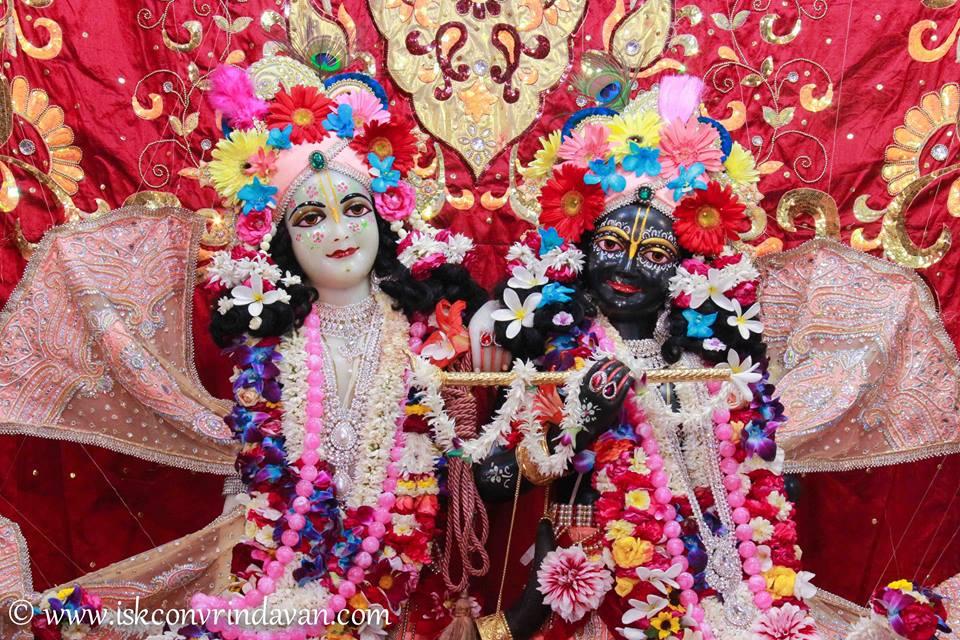 ISKCON Vrindavan Shringar Deity Darshan 2 April  2016  (2)