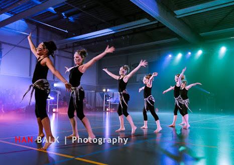 Han Balk Voorster Dansdag 2016-3771-2.jpg