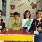 Introduction Of Parrot WKSN (Junior KG)10/02/2016