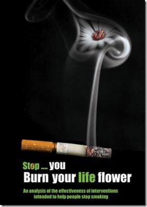 anti tabaco dia 31 mayo (6)