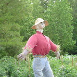 Our scarecrow.