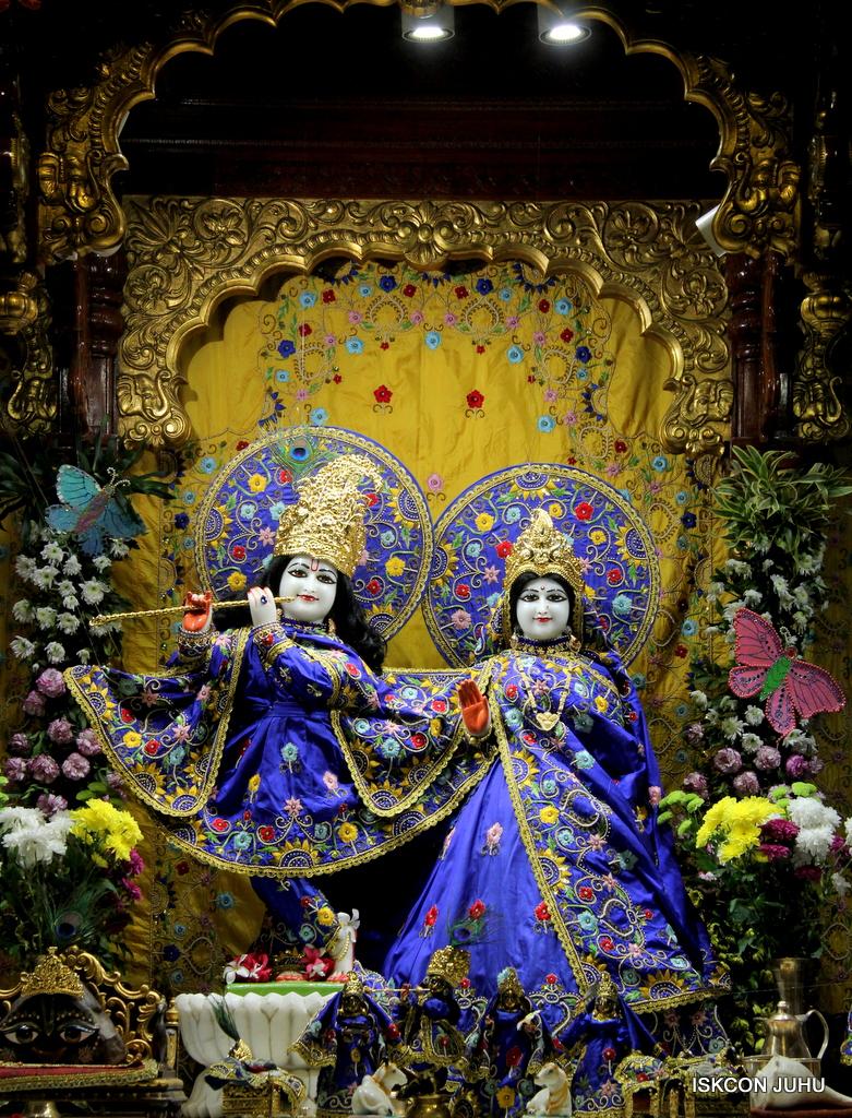 ISKCON Juhu Mangal Deity Darshan on 17th Jan 2017 (20)