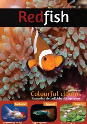 RedFish Mag 1