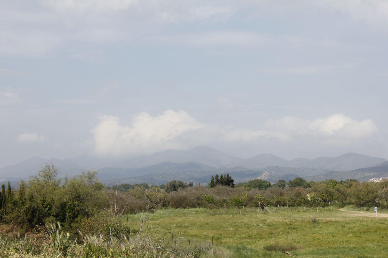 Campaments de Primavera de tot lAgrupament 2011 - _MG_3290.JPG