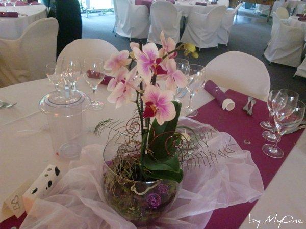 Deko hochzeit orchideen - Tischdeko orchideen ...