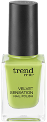 4010355285799_trend_it_up_Velvet_Sensation_Nail_Polish_10
