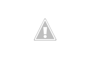 400 square skylight opal.JPG