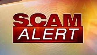 Investor Loses $60,000 In Dave Schmidt's Meta1 Coin Debacle Scam-alert-pic