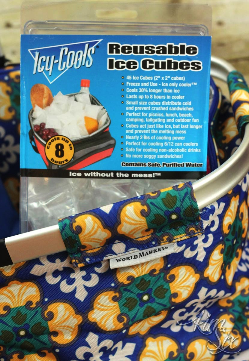 Reusable ice cubes and cooler