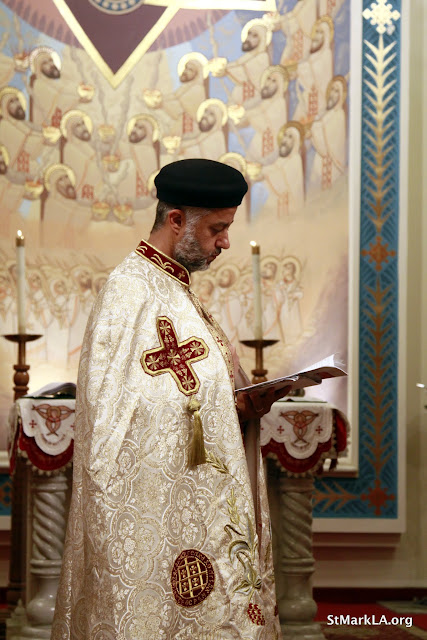 Rites of receiving Fr. Cyril Gorgy - _MG_1010.JPG